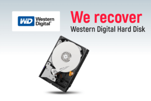 WD Western Digital Hard Disk Data Recovery
